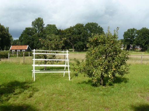 Appelboom Dijkmanszoet